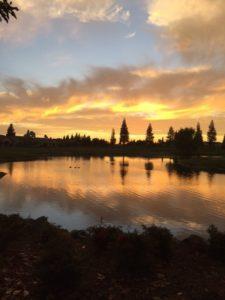 Sun City Sunset